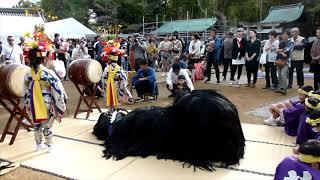令和元年丸亀垂水神社秋祭 獅子舞(前出 曲)