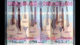 cửa hàng nhạc cụ Chuyên bán đàn guitar nước ngoài và Việt Nam