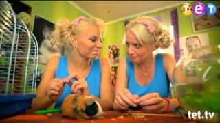 Даша и Кристина. Программа о животных