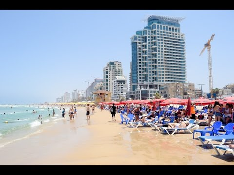 Holidays In Israel At Dolphinarium Beach