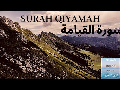 Quran Surah Qiyamah - Breathtaking Recitation - Can you guess who they are?