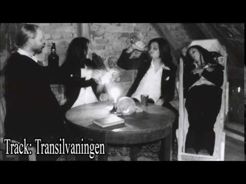 TRANSILVANIAN BEAT CLUB - Willkommen Im Club Full Album