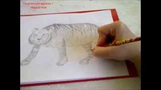 КАК НАРИСОВАТЬ ТИГРА(очень просто, для начинающих)(Здравствуйте! Предлагаю вашему вниманию видеоролик, где я показываю, как очень просто нарисовать тигра...., 2015-04-16T15:21:15.000Z)