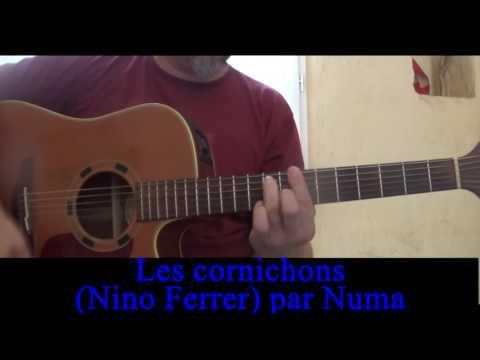 Les cornichons  ( Nino Ferrer) reprise...