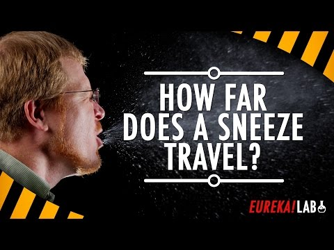 Snot Science: Taking mucus to the next level | Science News for Students