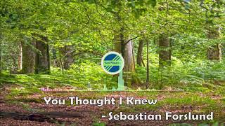 You Thought I Knew- Sebastian Forslund[indie POp Music]