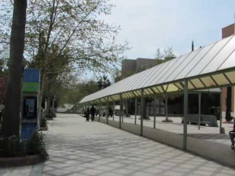 Universidad de Jaen - Spain, Jaen