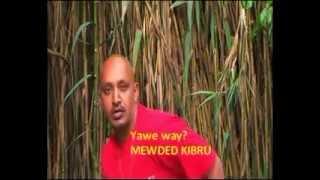 """Mewded Kibru - Yawiway """"ያዊዌ"""" (Guragegna)"""