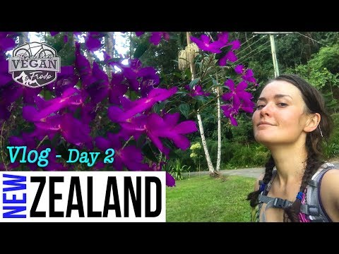 Day 2 - New Zealand Touring VLOG -  Bike packing to Dunedin