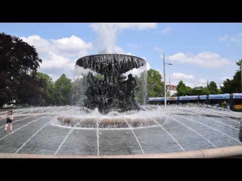 Der Zwillingsbrunnen in Dresden