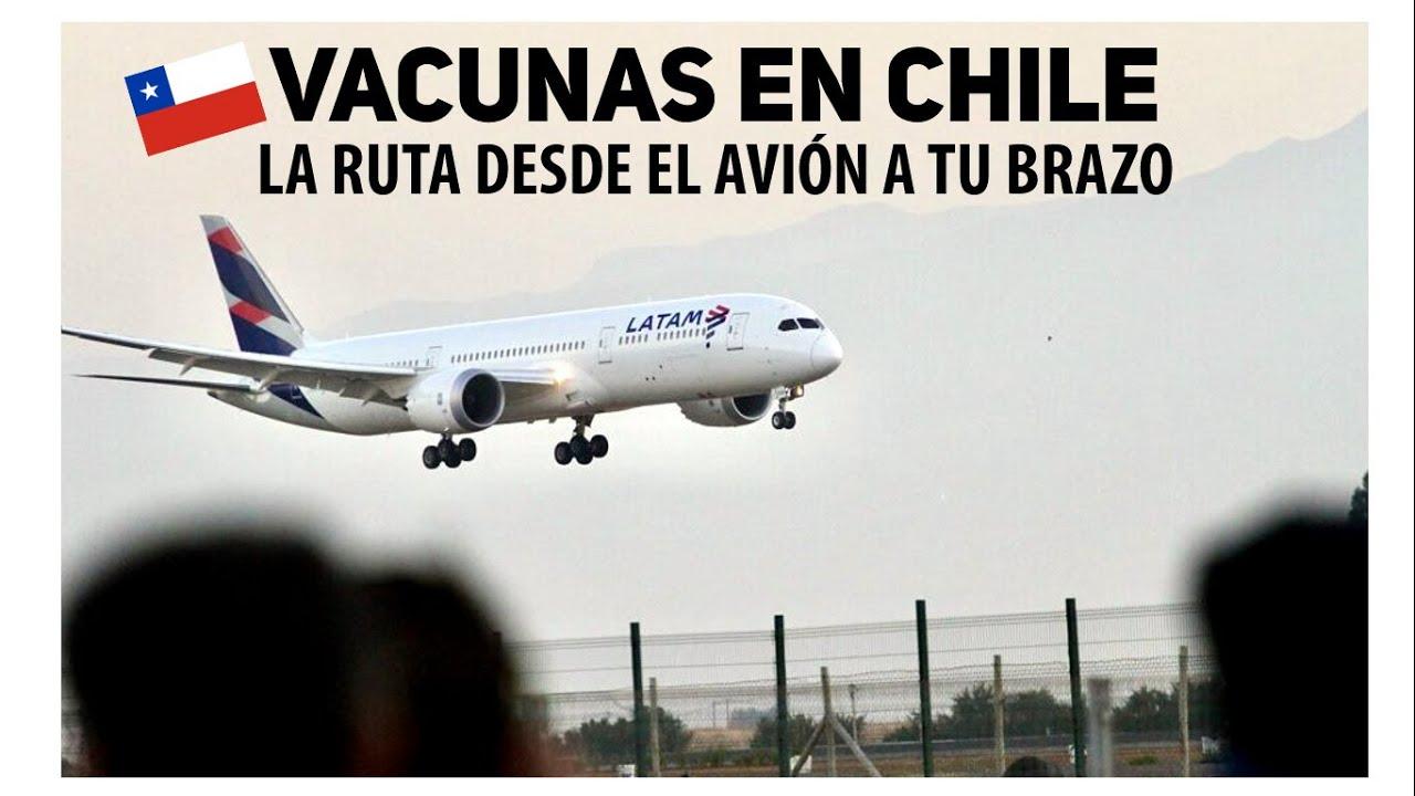 EL TRANSPORTE DE LAS VACUNAS EN CHILE 🇨🇱: Cómo llegan desde el avión a tu brazo