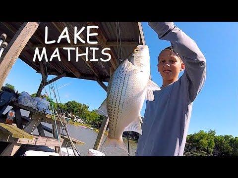 CATFISH | BASS | ALLIGATOR GAR | Pier Fishing Lake Mathis Texas