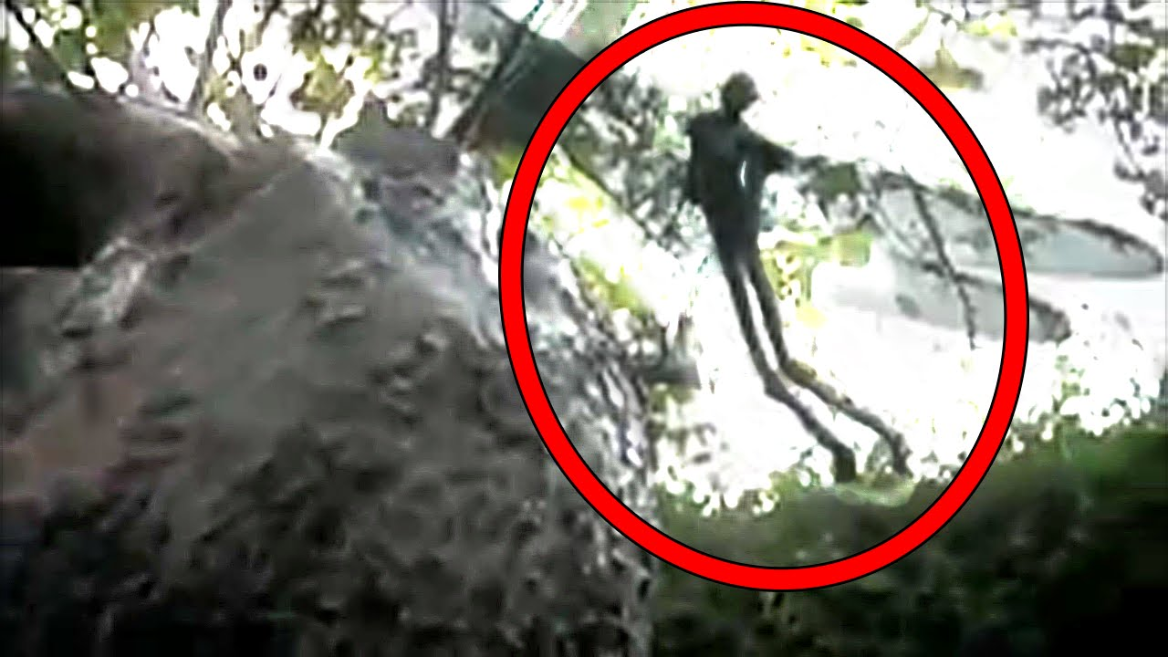 5 Mysterious Creatures Caught On Camera Youtube
