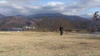 http://www.ne.jp/asahi/lara/hal9000/Lara/dog1.html 犬のしつけと訓練...