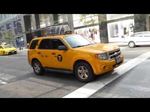 AIDA Warnemünde   New York 09/2017 - Teil 11 -  Seetag + New York   USA