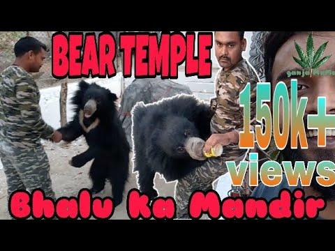 Bear Temple ||