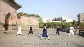 Wudang Martial Arts and Daoist Neiyang Gong