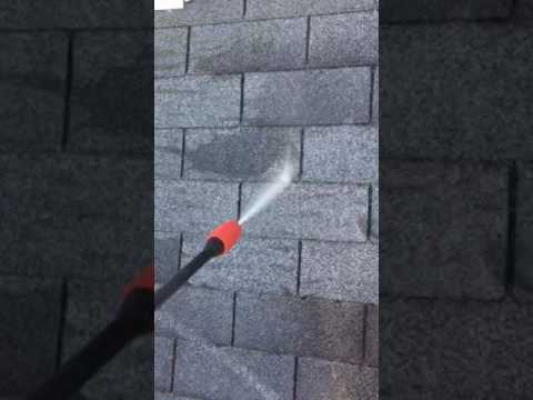 How To Make Best Roof Mold Moss Detergent To Take Off