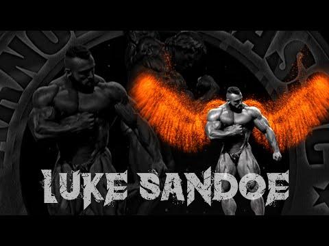 Luke Sandoe   Tribute   Motivation
