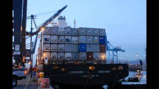 Container ship Horizen Kodiak Docking in 1 Minute