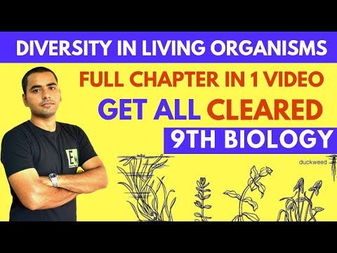 DIVERSITY IN LIVING ORGANISMS (FULL CHAPTER) | CLASS 9 SCIENCE