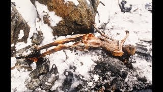 Wie starb Ötzi nun eigentlich? - Fakten über berühmte Gletschermumie
