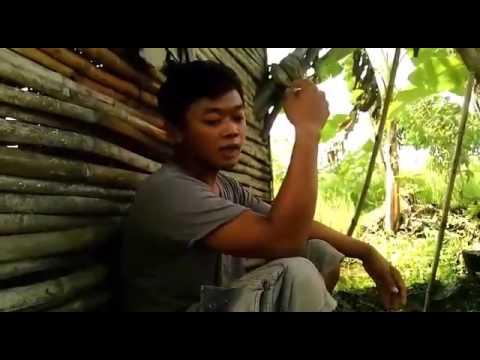 Guyonan jawa || video lucu