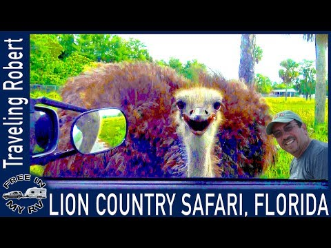Lion Country Safari, West Palm Beach - RV Living