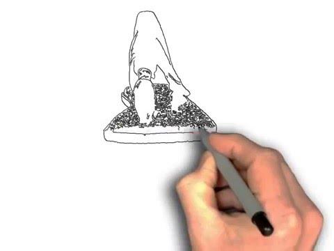 sanuk-women's-yoga-sling-slingback-sandal-►►-do-they-work?◄◄