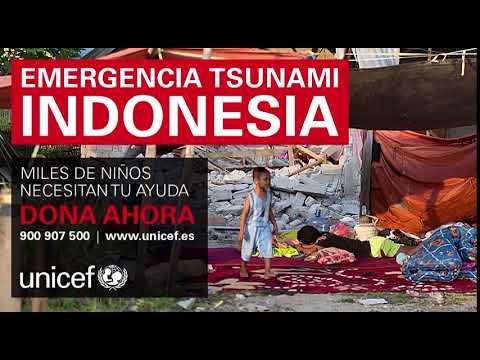 Emergencias Indonesia