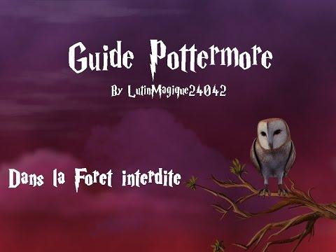 Guide Pottermore // Dans la Forêt...
