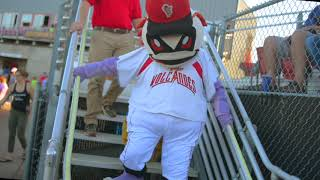 Salem-Keizer Volcanoes: Family, Friendly, Fun.