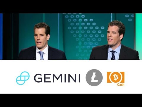 Winklevoss Twins Bitcoin Value Litecoin Stats – Bright Trip Co