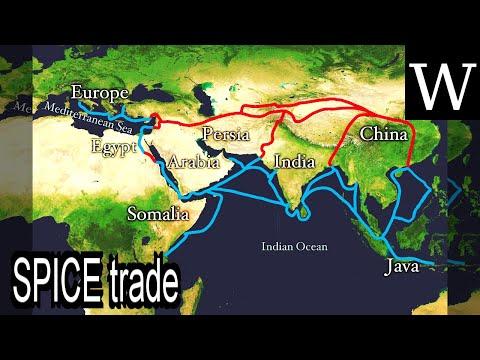 SPICE trade - WikiVidi Documentary