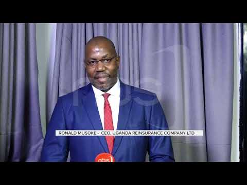 Insurance Brokerage Firms Ready To Underwrite Risks     NBS Live At 9