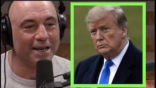 What Will Trump Do After He's President? | Joe Rogan & Tim Dillon