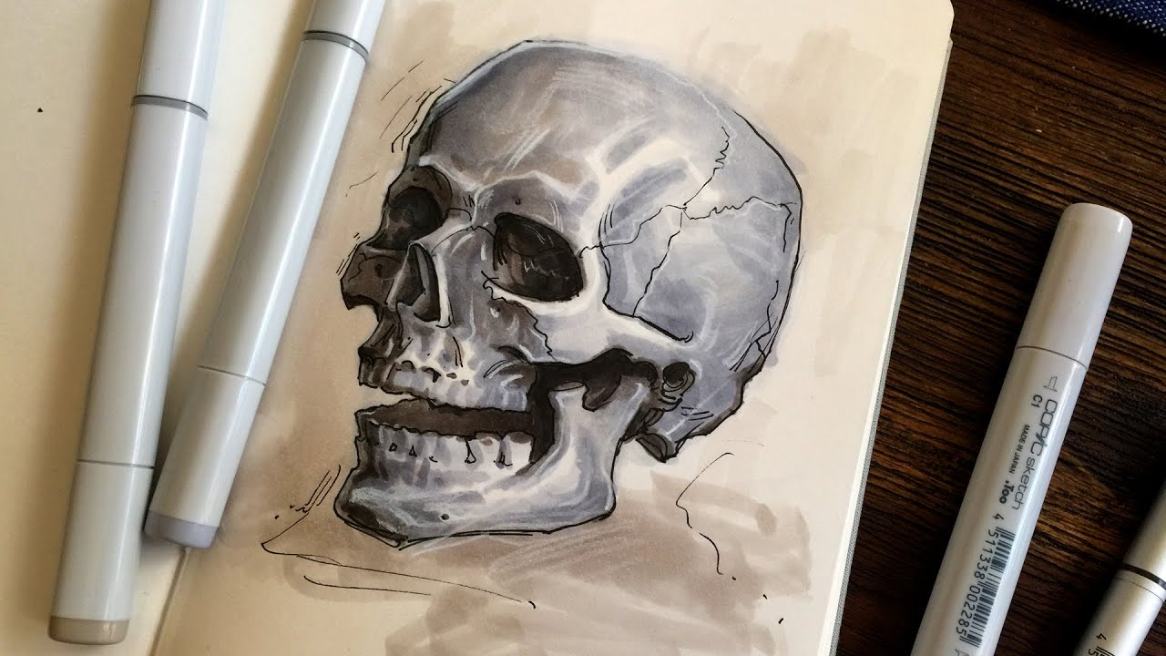 Skull Sketch with Copic Markers