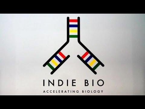 IndieBio Biotech Accelerator