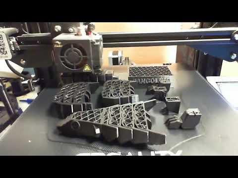 Save Pangolins - A Time Lapse Of 3D Printing A Save Pangolin Model
