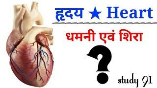 #Heart _? #science #biology #science video class#Study 91 #Nitin sir
