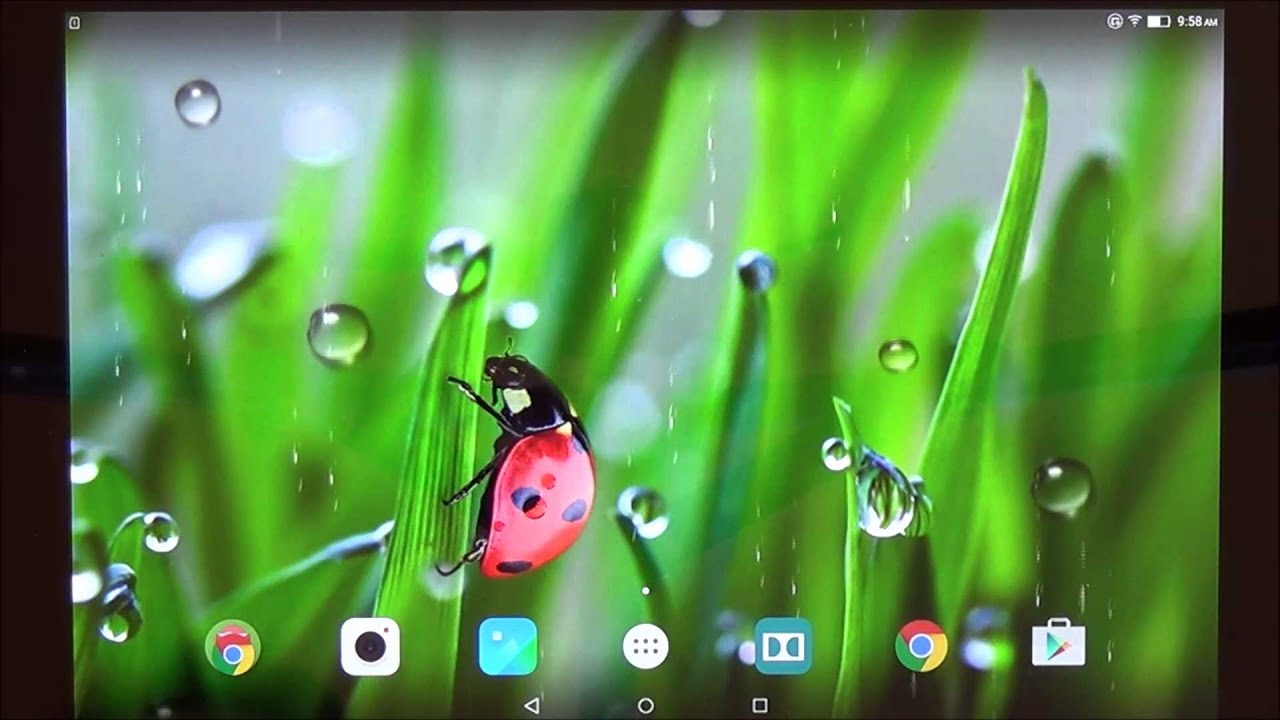 Macro Spring Live Wallpaper For Android Phones And Tablets Youtube