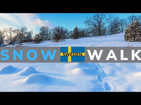 Sweden : A Winter Walk In Västerås 😍