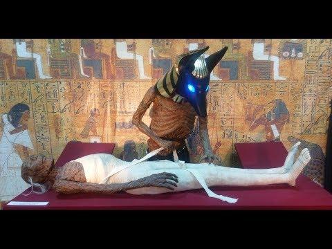 «Эти мумии не