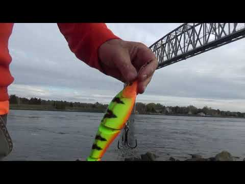 Cape Cod Canal Fishing 5-4-2019/vanlife On Cape Cod