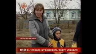 Липецкая область и кооперативы: три коровы за 6 тысяч рублей