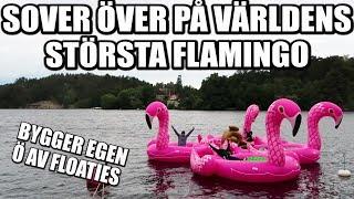 SOVER ÖVER PÅ VÄRLDENS STÖRSTA FLAMINGO