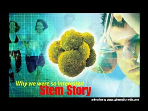 AFA Extract Malaysia - The Stem Cell Nutrition