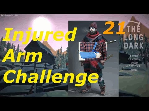 Finishing touches - Injured Arm Challenge 21 - The Long Dark Interloper