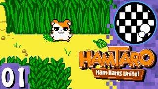 Hamtaro: Ham Hams Unite! | PART 1