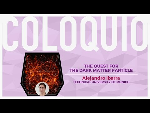 The quest for the dark matter particle